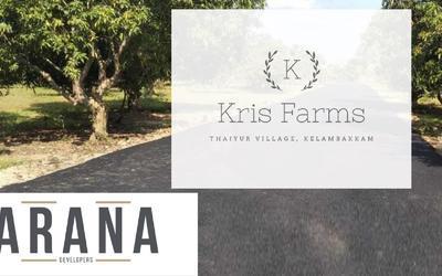 arana-kris-farms-in-34-1619098696225