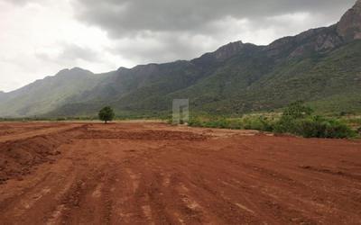 chettinad-farms-in-795-1626177691697