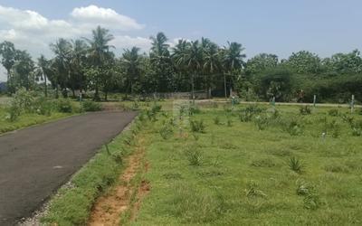 mrp-green-garden-in-108-1630743004301.