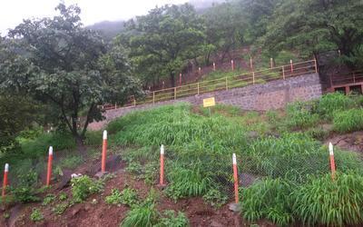 girivan-plots-in-mulshi-exterior-photos-1hxv